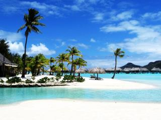 обои Курорт бора бора с пальмами и морем фото
