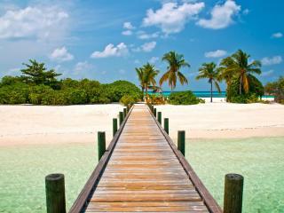 обои Мостик на пальмовый островок фото