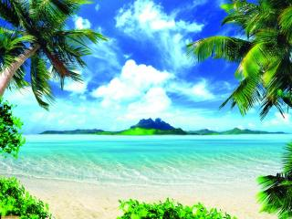 обои Остров в море и пальмы фото