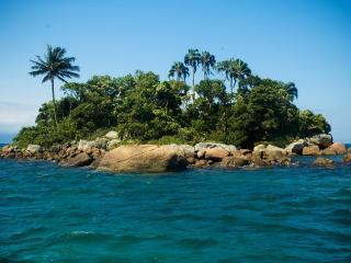 обои Пальмовый остров фото