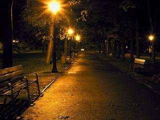 обои Дорожка в парке с фонарями фото