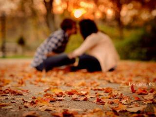 обои Влюбленная пара в парке фото