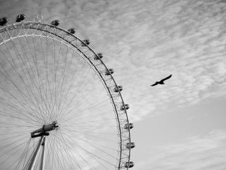 обои Лондонский глаз фото