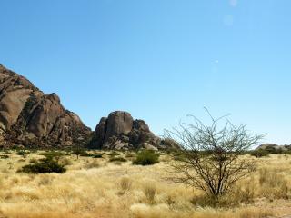 обои Скалы и скудная растительность фото