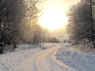 обои Деревенская дорога зимой фото