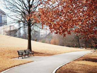 обои Городской пейзаж парка с дорожкой и лавочкой фото
