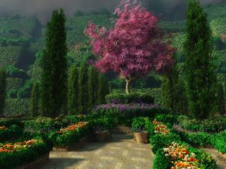 обои Клумбы и декоративные деревья фото