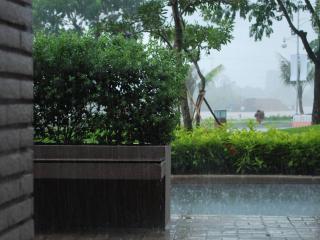 обои Дождь в городе фото