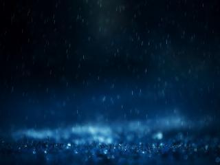 обои Капли дождя фото