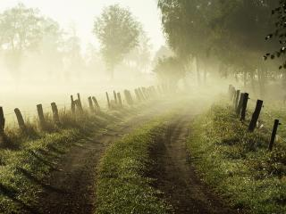 обои Утренней рассвет у проселочной дороги фото