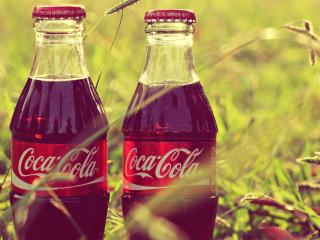 обои Coca-cola в бутылках на траве фото