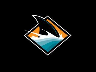 обои Хоккей,   логотип команды фото