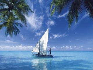обои Яхта на море фото