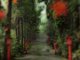 обои Дорожка с красными фонарями ранней осенью фото