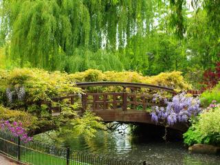 обои Красивый мостик потопающий в парковой зелени фото