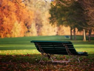 обои Лавочка в парке и опавшие листья фото