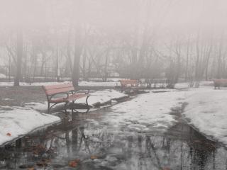 обои Туман в городском парке фото
