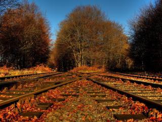 обои Железнодорожный перекресток фото