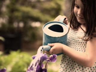 обои Девочка поливает цветы фото