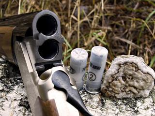 обои Охотничьё ружьё на бревне фото