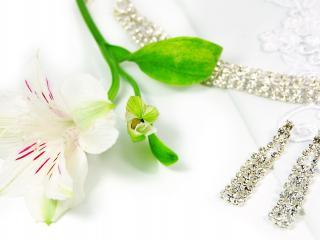 обои Белый цветок лежит у колье с серьгами фото