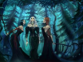 обои Ведьмы в лесу рисунок фото