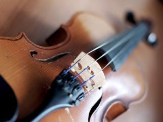 обои Скрипка музыкальный инструмент фото