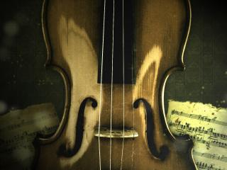 обои Скрипка на фоне нот фото