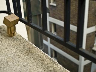 обои Danbo - На балконе фото