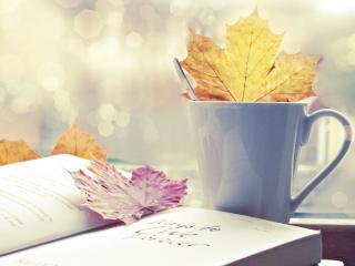 обои Осенние листья на книге и в чашке фото