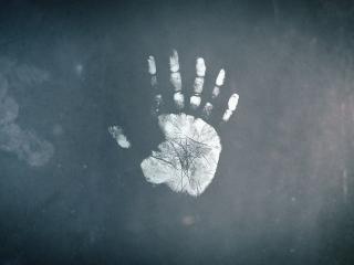 обои Отпечаток руки с шести пальцев фото