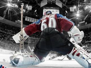 обои Хокейный вратарь фото