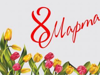 обои Ряд тюльпанов к восьмому марта фото