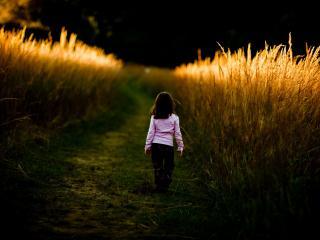 обои Девочка на тропинке в поле фото