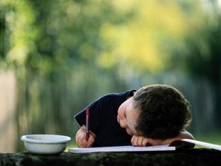 обои Маленький писатель фото