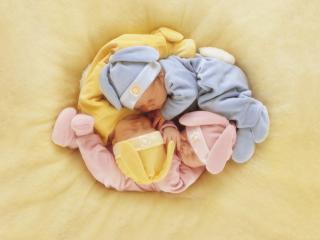 обои Три малыша спят клубочком фото