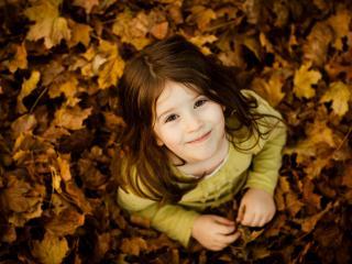 обои Улыбка девочки в желтых листьях фото