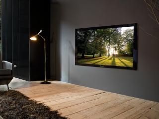 обои Домашний кинотеатр с пушистым ковром фото