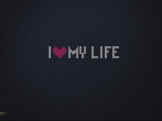 обои Я люблю свою жизнь,   надпись фото