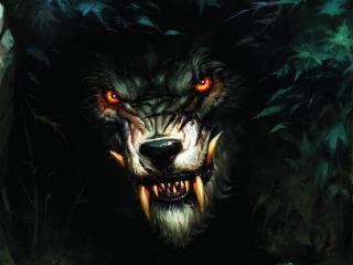 обои Волк оборотень фото