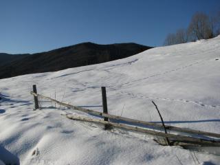 обои Следы на снегу фото