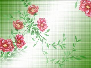 обои Красные цветы вьющиеся фото
