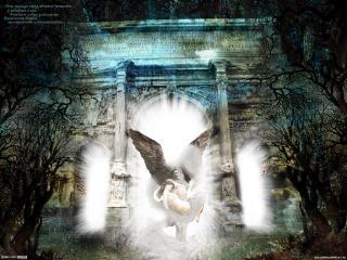 обои Ангел - демон фото