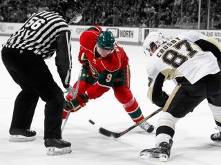 обои Хоккейное вбрасывание шайбы фото