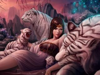 обои Девушка в семействе белых тигров фото