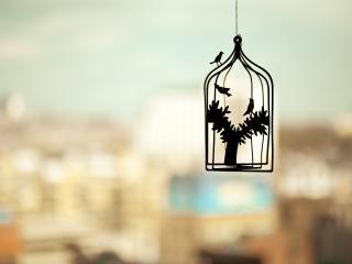 обои Клетка с деревом и птицы фото