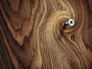 обои Шуруп в деревянной поверхности фото