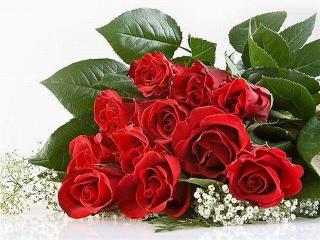 обои Розы - Букет алых роз фото
