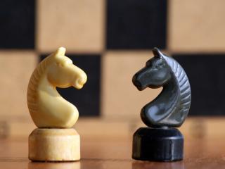 обои Шахматные  фигуры  конь чёрный и белый фото