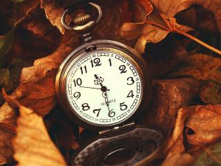 обои Часы на осенних листьях фото